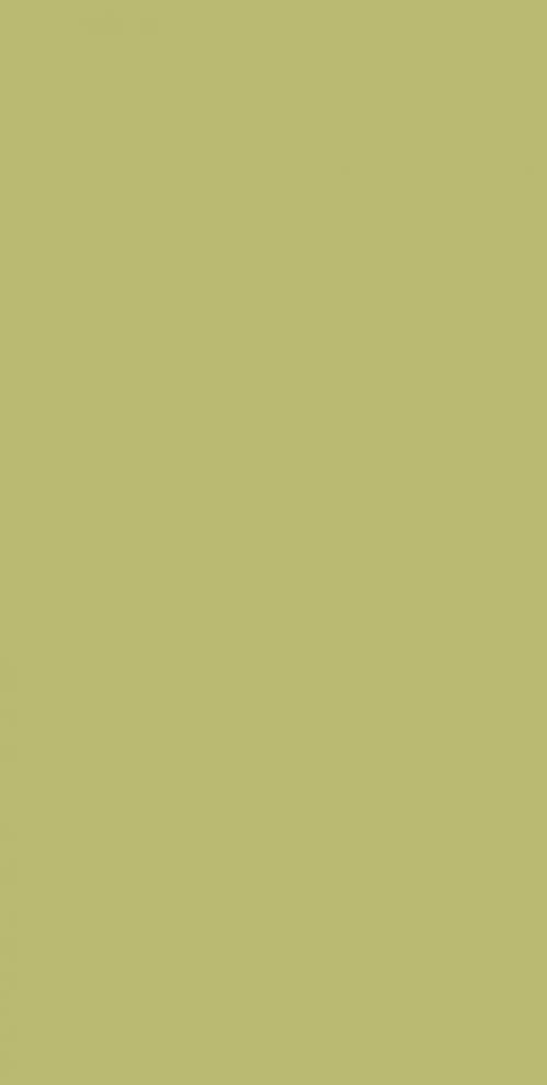 Villeroy & Boch Play It! Wandfliesen 1560 PI50 grün glänzend 25x50 cm