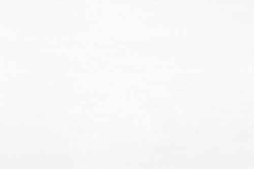 Agrob Buchtal Uncover Wandfliesen weiß seidenmatt 25x75 cm
