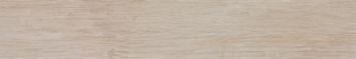 Steuler Bodenfliese Schwarzwald Y66540001 natur 20x120 cm