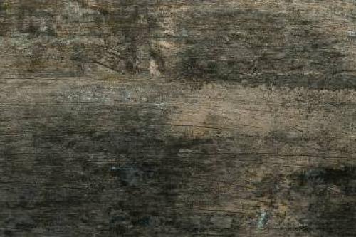 Grespania Cava Bodenfliese Bobal 14,5x120 cm