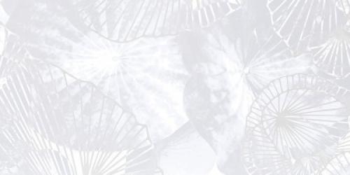 Steuler Pure White Wandfliese ,,Lotus´´  weiß glänzend 30x60 cm