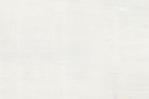Agrob Buchtal Mando Wandfliese weiß matt 35x100 cm