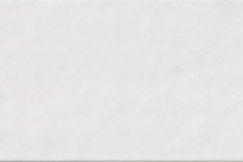 Steuler Wandfliese Albany Y26435001 weiß-grau 25x50 cm