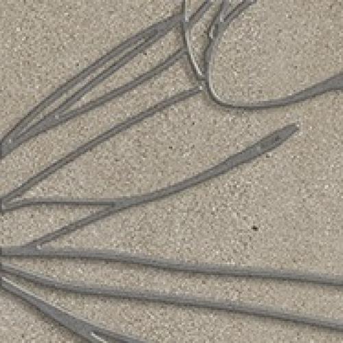 Steuler Steinwerk Dekor ,,Blüte´´ taupe matt 18.75x18.75 cm